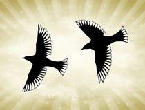 De gouden Vogels van de Zon Royalty-vrije Stock Afbeeldingen