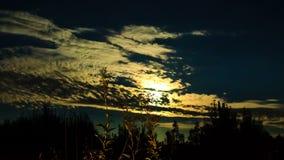 De gouden wolken bewegen zich op de achtergrond van de volle maan in de nacht, sterrige hemel stock video