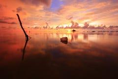 De gouden zonsondergang Royalty-vrije Stock Afbeelding