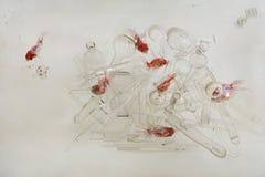 De goudvis zwemt in het transparante water van aquarium in het midden van een massa transparante glasschotels: een stapel van rea Royalty-vrije Stock Afbeeldingen