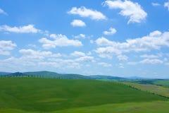De gröna kullarna med cypressen av Tuscany Royaltyfri Bild