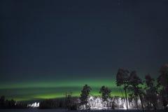 De gröna nordliga ljusen ovanför det vitt sörjer träd Royaltyfri Fotografi