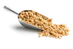 De graangewassen van het granolaontbijt Stock Afbeelding