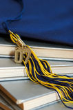 de graduatie van 2007 Stock Afbeelding