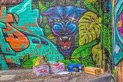 De graffitipanter van Melbourne Stock Afbeeldingen