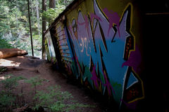 De graffititrein veroorzaakt in Fluiter Stock Fotografie