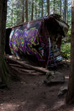 De graffititrein veroorzaakt in Fluiter Stock Afbeeldingen