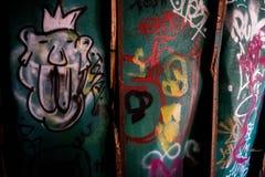 De graffititrein veroorzaakt in Fluiter Royalty-vrije Stock Foto's