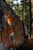 De graffititrein veroorzaakt in Fluiter Royalty-vrije Stock Fotografie