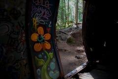 De graffititrein veroorzaakt in Fluiter Stock Foto