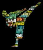 De grafiek van de karate Royalty-vrije Stock Fotografie