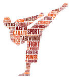 De grafiek van de karate Stock Foto's