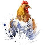De grafiek van de kippent-shirt, het kweken kippenillustratie met de geweven achtergrond van de plonswaterverf het fokken van de  vector illustratie