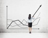 De grafiek van de statisticustekening royalty-vrije stock foto