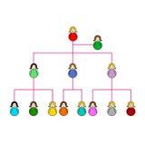 De grafiek van Organizationl van de onderneming van vrouwen Stock Foto