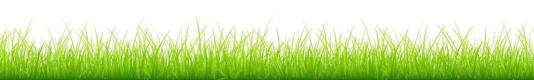 De grafische Groene Weide Verschillende Hoogten snakken Horizontale Banner vector illustratie