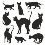 De grafische vectorreeks van kattensilhouetten Royalty-vrije Stock Afbeeldingen