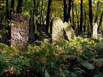 De grafstenen in het midden van het bos royalty-vrije stock afbeelding