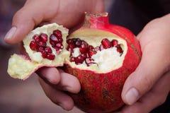 De granaatappel deseed stock afbeeldingen