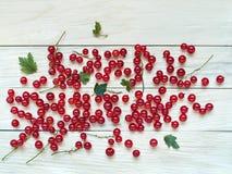 De grandes baies fraîches de groseille rouge sont dispersées sur un backgr en bois Photos stock