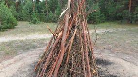 De grands rondins pliés pour le feu dans la forêt le feu est préparés pour le feu clips vidéos