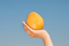 De grapefruit in meisje overhandigt blauwe hemel Stock Fotografie