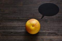 De grapefruit met toespraakbel heeft te zeggen iets Stock Fotografie