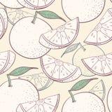 De grapefruit stileerde naadloos patroon royalty-vrije illustratie