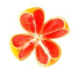 De grapefruit van de besnoeiing Royalty-vrije Stock Foto