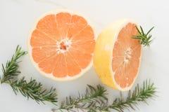 De grapefruithelften en Rosemary Sprigs royalty-vrije stock afbeeldingen
