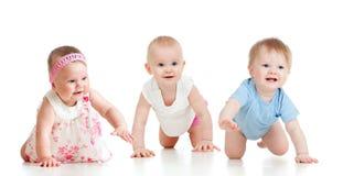 De grappige babys dalen op alle fours Stock Fotografie
