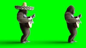 De grappige bruine gorilla speelt de gitaar Super realistisch bont en haar groene het scherm4k animatie stock videobeelden