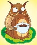 De grappige dranken van de uilkoffie Stock Afbeelding