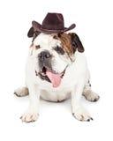 De grappige Hond kleedde zich als Cowboy Royalty-vrije Stock Foto's