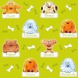 Grappig honden naadloos patroon Royalty-vrije Stock Foto