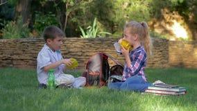 De grappige hongerige vrienden nemen snel voedselcontainers van rugzakken, weinig jongen en meisje die sandwiches eten zittend stock footage