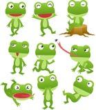 De grappige inzameling van het kikkerbeeldverhaal Stock Foto