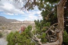 De grappige, malle huiden van de blondevrouw in de struiken dichtbij een jeneverbessenboom op Rood het Behoudsgebied van de Rotsc royalty-vrije stock foto's