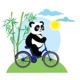 De grappige panda draagt op fiets royalty-vrije illustratie