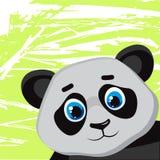 De grappige panda van het beeldverhaal Stock Foto