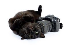 De grappige zwarte kat is fotograaf met DSLR-camera op wit royalty-vrije stock afbeeldingen