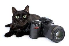 De grappige zwarte kat is fotograaf met DSLR-camera op wit royalty-vrije stock foto's