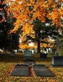 De Graven van de begraafplaats in de Herfst Stock Afbeeldingen