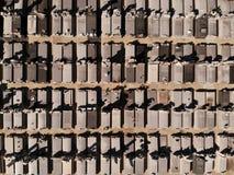 De graven van de hommelmening stock fotografie