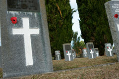 De graven van militairen. Stock Foto