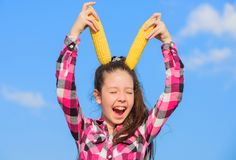 De greep gele maïskolf van het jong geitjemeisje op hemelachtergrond Rijpe korrels van de meisjes de vrolijke greep Graan vegetar stock foto's