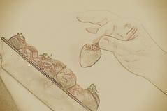 De greep rode rijpe aardbei van de vrouwenhand Royalty-vrije Stock Afbeelding