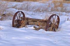 De Greep van de winter Stock Foto's