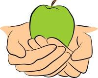 De greepfruit van handen vector illustratie