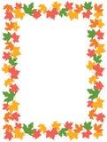 De Grens van de Bladeren van de herfst [esdoorn] Royalty-vrije Stock Foto